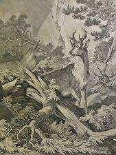 Johann Elias Ridinger (1698-1767) Top-ORIG. RAR RAME chiave 1737: Hirsch-caccia