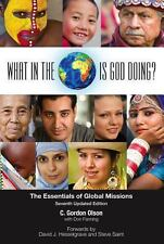 What in the World Is God Doing? : The Essentials of Global Missions by C....