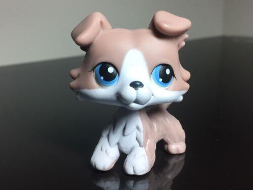2-FREE ACCESSORIES Littlest Pet Shop Collie Puppy Dog LPS #67 Grey//White