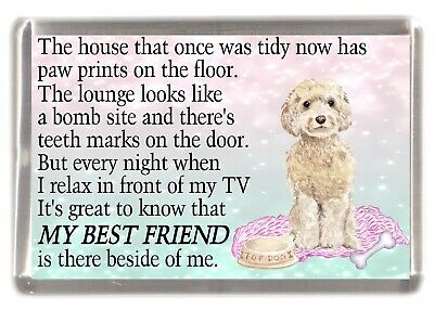 """Cavapoo Dog Coaster /""""HOME SWEET HOME Poem ../"""" Novelty Gift by Starprint"""