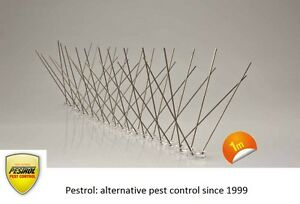 Bird-Spikes-Polycarbonate-base-1-metre-narrow-base-by-Pestrol