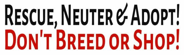 Rescue Neuter & Adopt Don't Breed or Shop! 3x10 Bumper Sticker Decal pet dog cat