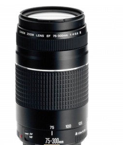 Canon EF 75-300 mm F/4.0-5.6 III Objektiv