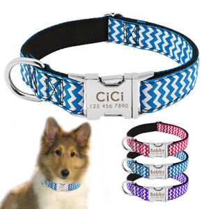 nylon personalized dog collar with name plate padded collar tag free