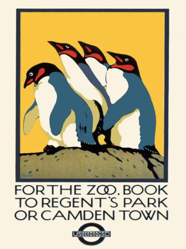For the Zoo Book Decorative Poster Fine Graphic Art Wall Interior Design 2414