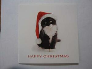 Black-amp-White-Cat-glitter-Santa-Hat-Charity-Christmas-cards-5-pack-5-inch-square