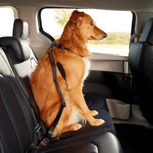 Auto  Haustier Katze Hund Fahrzeug Sicherheitsgurt Sitzgurt 105948