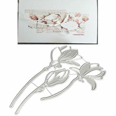 Frame Label Metall Stanzformen Schablonen DIY Scrapbooking Papierkarten Handwerk