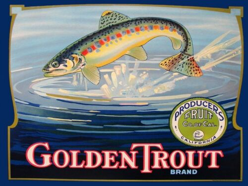 Golden Trout Fish River Crate Label California Vintage Poster Repro FREE S//H