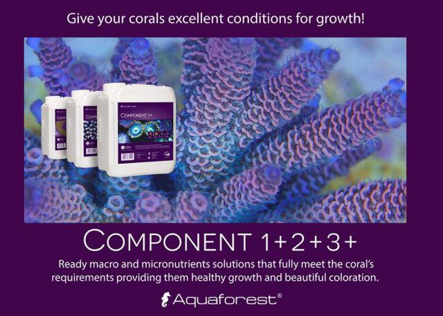 Component +1, +2,+3 / AQUAFOREST.TODO PARA EL CORAL/ 3 GARRAFAS DE 5 LITROS