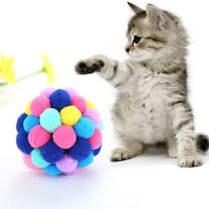 PT-Cn-Creativo-Colorato-Elastico-Sfera-Gatto-Gattino-Teaser-Animale-Domesti