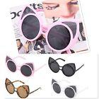 Vintage Women Cat Ears Shape Sunglasses Retro Designer Outdoor Glasses LKS