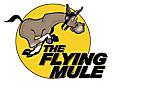 The Flying Mule