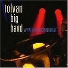 Tolvan Big Band - Walk in the Centerpoint (2015)
