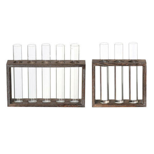 Glass Test Tube Vase Flowers Plants Hydroponic Planter Wooden Stand-3//5 Tube