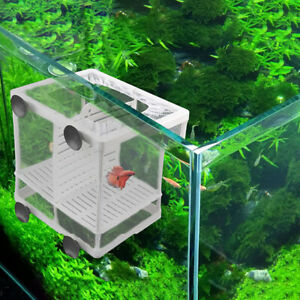Aquarium-Fish-Breeding-Box-Fry-Trap-Hatchery-Floating-Breeder-Isolation-G9C