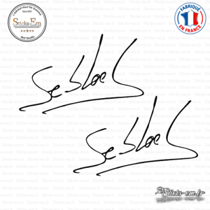 STICKER PEGATINA DECAL VINYL Sebastien Loeb Signature