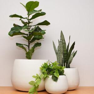 Lightweight Plant Pot Round Planter Natural White S M L Complete Set Ebay