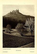 Il ungarico * Castello * storico documento immagine di 1925