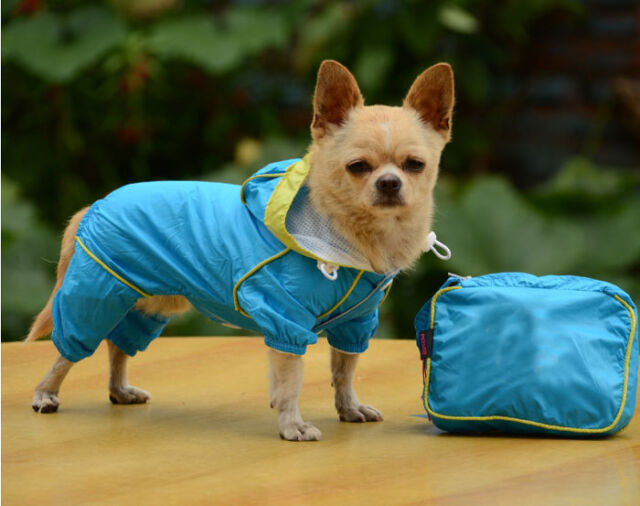 Fashion New Dog Clothes Pet Hoodie Rain Coat for Small Dogs Pet Jacket & Pocket