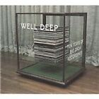 Various Artists - Well Deep (Ten Years of Big Dada Records, 2007)