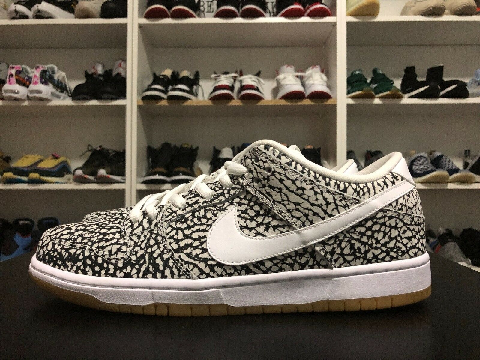 Deadstock Nike SB Dunk Premium  ROAD PACK  SALE Last Pair 10.5
