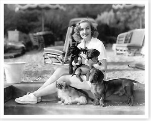 Movie-Actress-Carole-Lombard-with-Dogs-amp-Cats-8x10-Silver-Halide-Photo