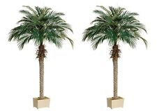 """2 Artificial 70"""" Phoenix Palm Tree with Pot Plant Bush Topiary Office Patio Ivy"""