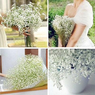 FD1452 Silk Flowers Gypsophila Baby's Breath Plants Home Wedding Decor ~5PCs~