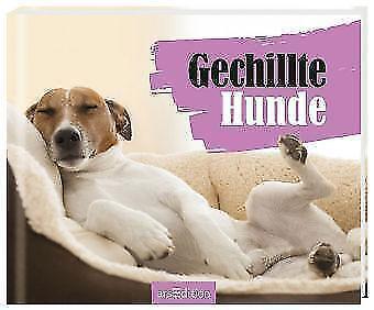 Vennebusch, Paulus - Gechillte Hunde /4