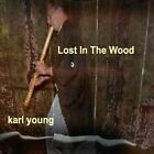 Lost In the Wood by Karl Young (CD, Oct-2011, CD Baby (distributor))