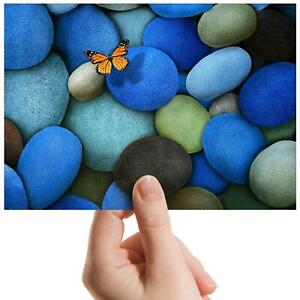 """Butterfly Blue Pebbles Seaside Small Photograph 6""""x4"""" Art Print Photo Gift #8959"""