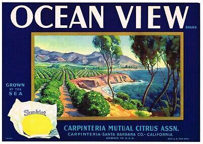 ORIGINAL OCEAN VIEW LEMON CRATE LABEL SANTA BARBARA CARPINTERIA VINTAGE SEA B72
