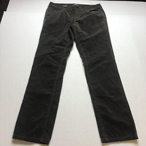 Loft Modern Straight Leg Brown Velour Pants Size 6 A1021