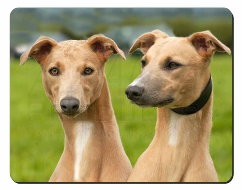 AD-WH1M Whippet Dogs Computer Mouse Mat Christmas Gift Idea