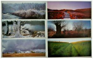 div 21cm x 51cm Landschaft Motive Kunstdruck//Poster 22x54 unbeschnitten