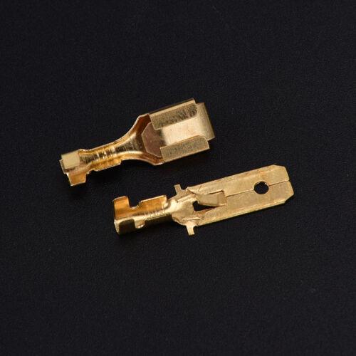 Conectores de cable eléctrico automotriz 6.3mm3pin macho FemaleCa G2