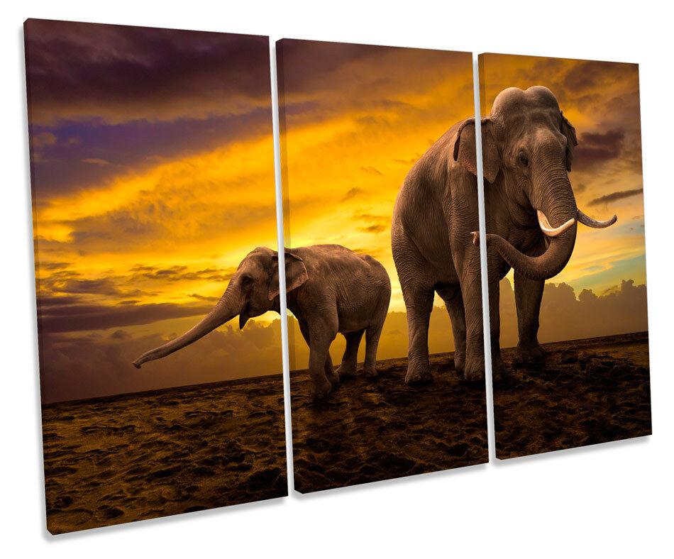 Elephants Sunset Africa Safari TREBLE CANVAS WALL ART Box Framed Picture