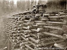 Logging Railroad Crib Trestle, Columbian & Nehalem Valley RR Oregon -Photo Print