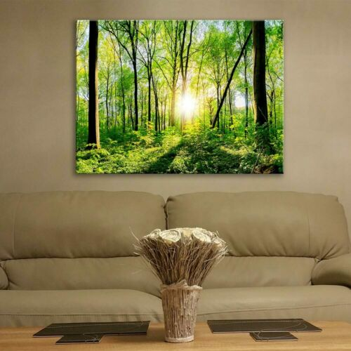 Glass Picture Toughened Wall Art Unique New Modern Green Forest