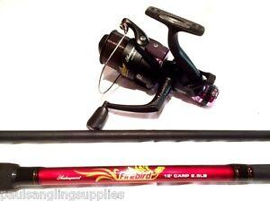 shakespeare firebird carbon carp fishing rod with freespool carp
