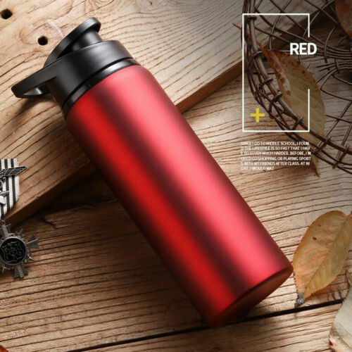 Sport Stainless Steel Water Bottle Straight Drink Bicycle Travel Cold Kettles US