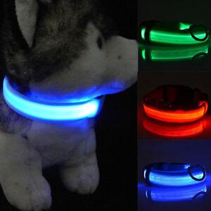 LED-Lumineux-Clignotant-Reglable-Chien-de-compagnie-Chat-Corde-Collier