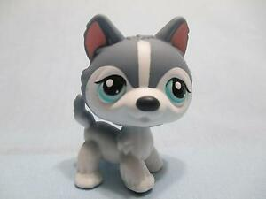 Littlest Pet Shop Blue & White Husky Puppy Dog With Green Eyes No # 100% Authent
