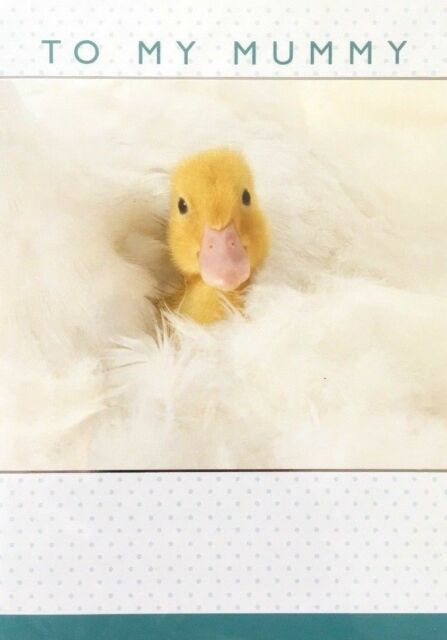 To My MUMMY Birthday Greeting Card 'under your wing' Duckling theme