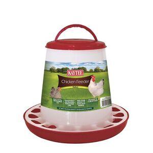 Kaytee Chicken Feeder Medium up to 5lb Capacity Colors Vary (Free Shipping USA