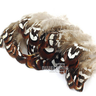 DIY 50pcs 2-3 Inch Natural Pheasant Feathers for Floral Art Hat Decoration Craft