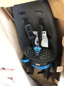31dad6f67e6 Thule Yepp Nexxt Maxi Child Bike Seat- No Lock Core  Keys!