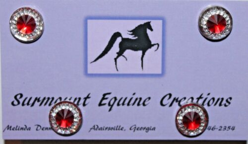 Horse Show Number Magnets Saddleseat Hunt Seat Western Rhinestone Several Colors