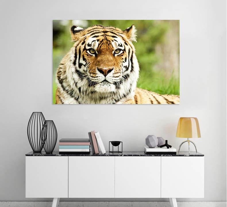 3D Imposant Tiger 354 Fototapeten Wandbild  BildTapete Familie AJSTORE DE